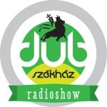 dszh-logo